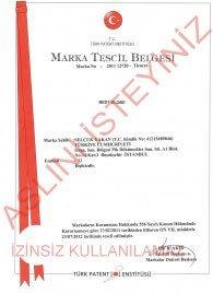 BEST GLOBE MARKA TESCİL BELGESİ